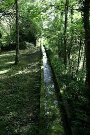 Lungo la via dell'acqua a Cison di Valmarino